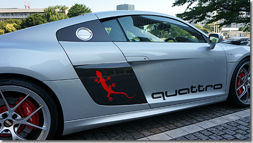 Audi R8 Side Panel, 3M Japan Car Wrapping Film