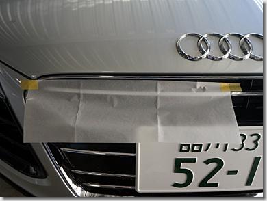 Audi R8 Quattro Front Grill Stripe