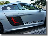 Audi R8 Gecko & quattro Side Logo